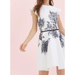 NEW Ted Baker Woodland Toile Skater Dress